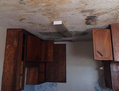 Mold Removal in Temple Texas